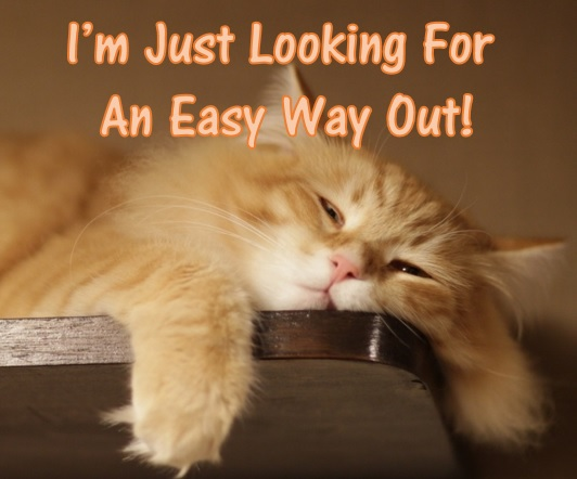 A very sleepy cat! The caption says I'm just looking for an easy way out!