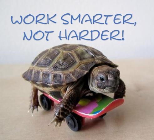 Start an online business and Work smarter not harder!