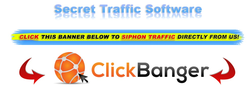 Copy My Websites Traffic software.