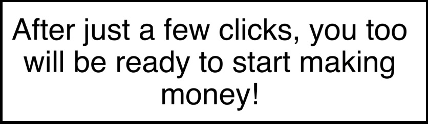 The 12 Day Millionaire website makes it sound really easy to make money on the internet.